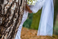 Svatební fotografování v Hranicích na Moravě