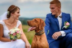 svatební foto se psem