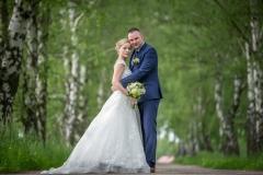 svatební foto v březové aleji